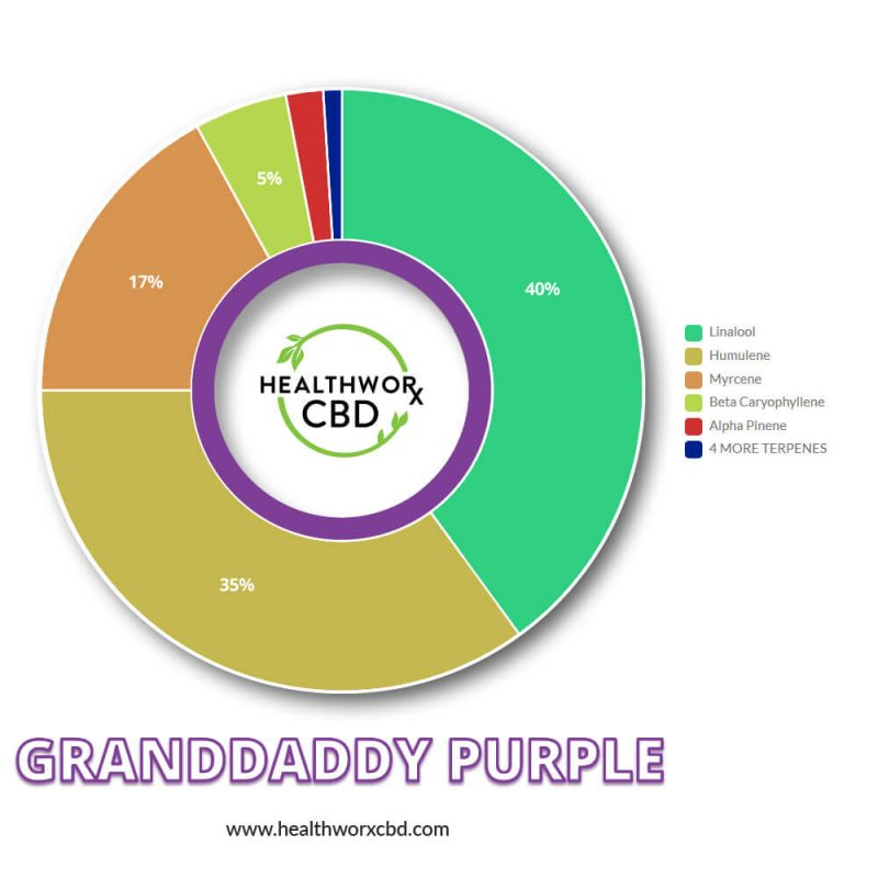 CBD Granddaddy Purple Strain Terp Chart