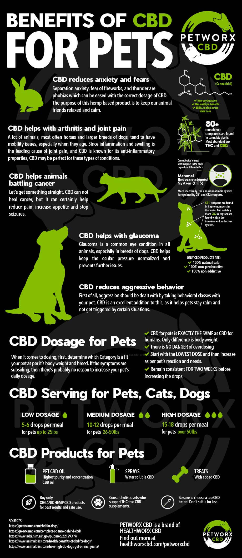 Benefits of CBD for Pets Infographic