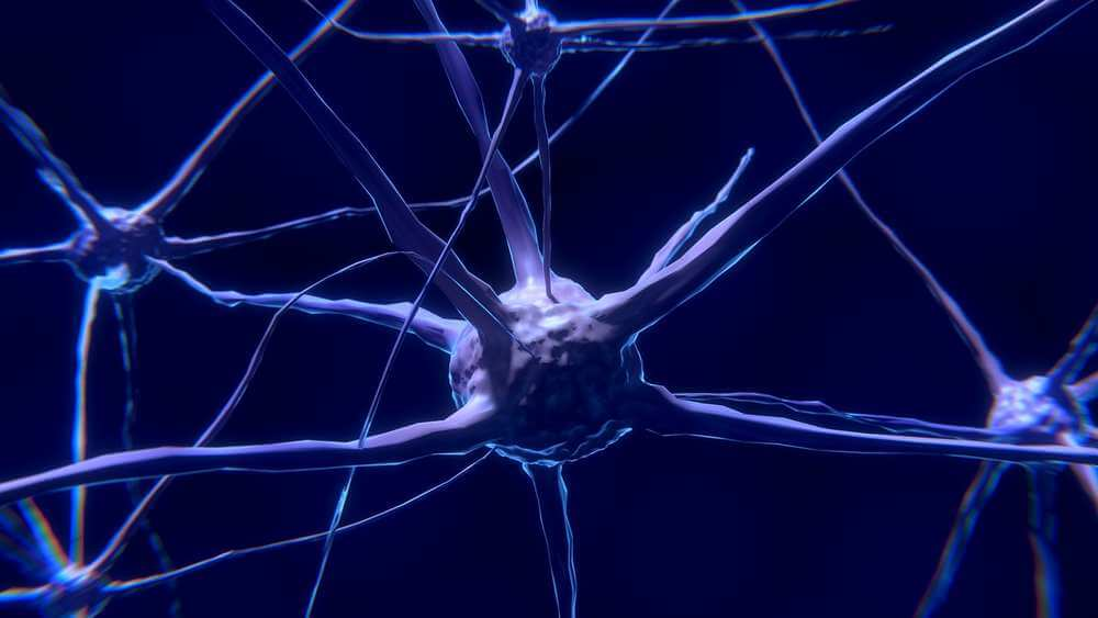 Brain Cells - CBD and the Brain: How Can CBD Help? - Effects of CBD