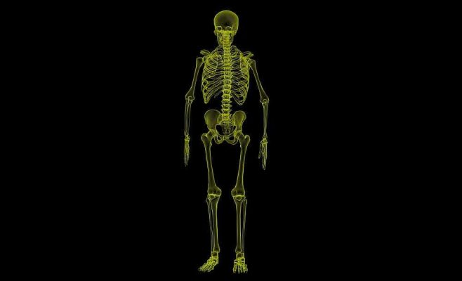 CBD Bone - How can CBD Help Your Bones?